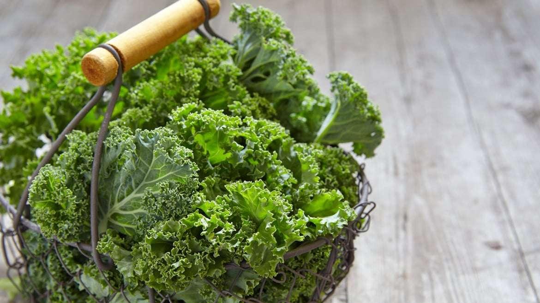 Kale para adelgazar