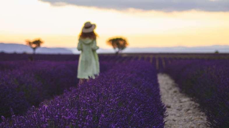 La Provenza en primavera, uno de los enclaves más importantes del sur de Francia