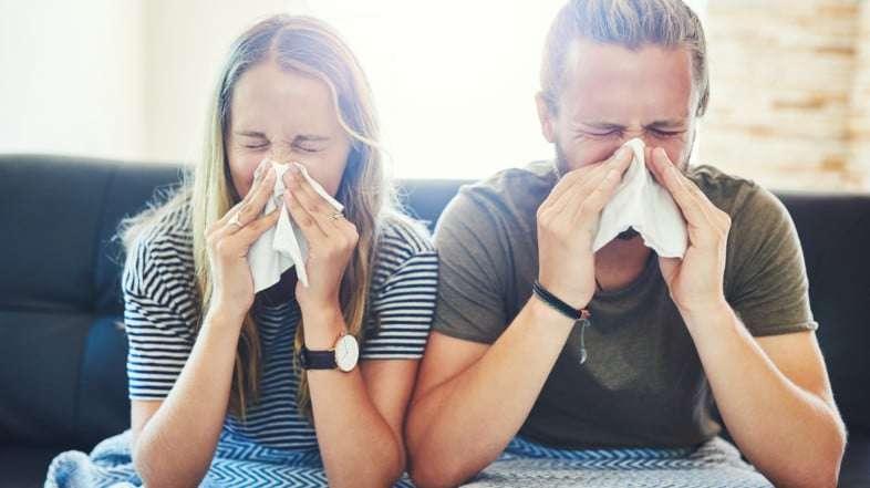 ¿Cuál es el vínculo entre microbiota intestinal y alergia?