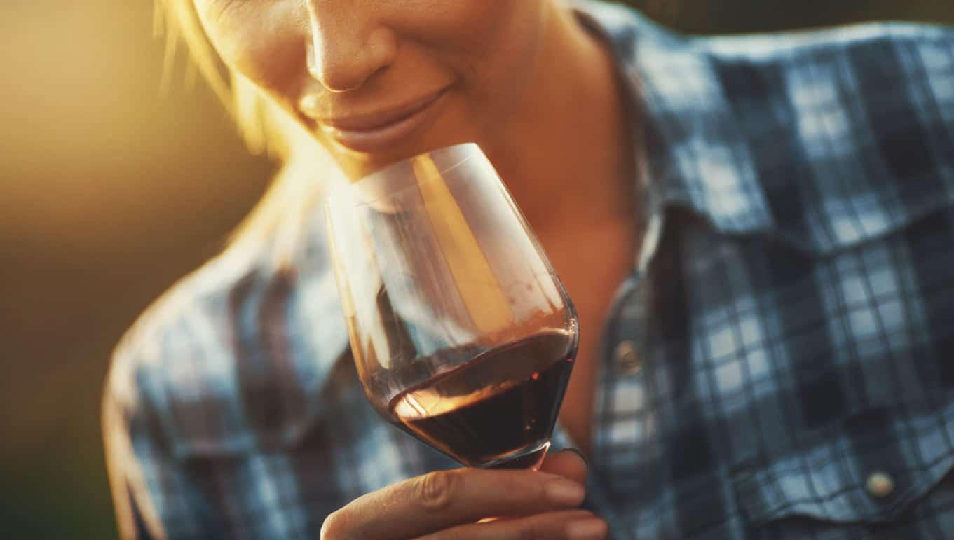 La relación del vino tinto con la microbiota intestinal.
